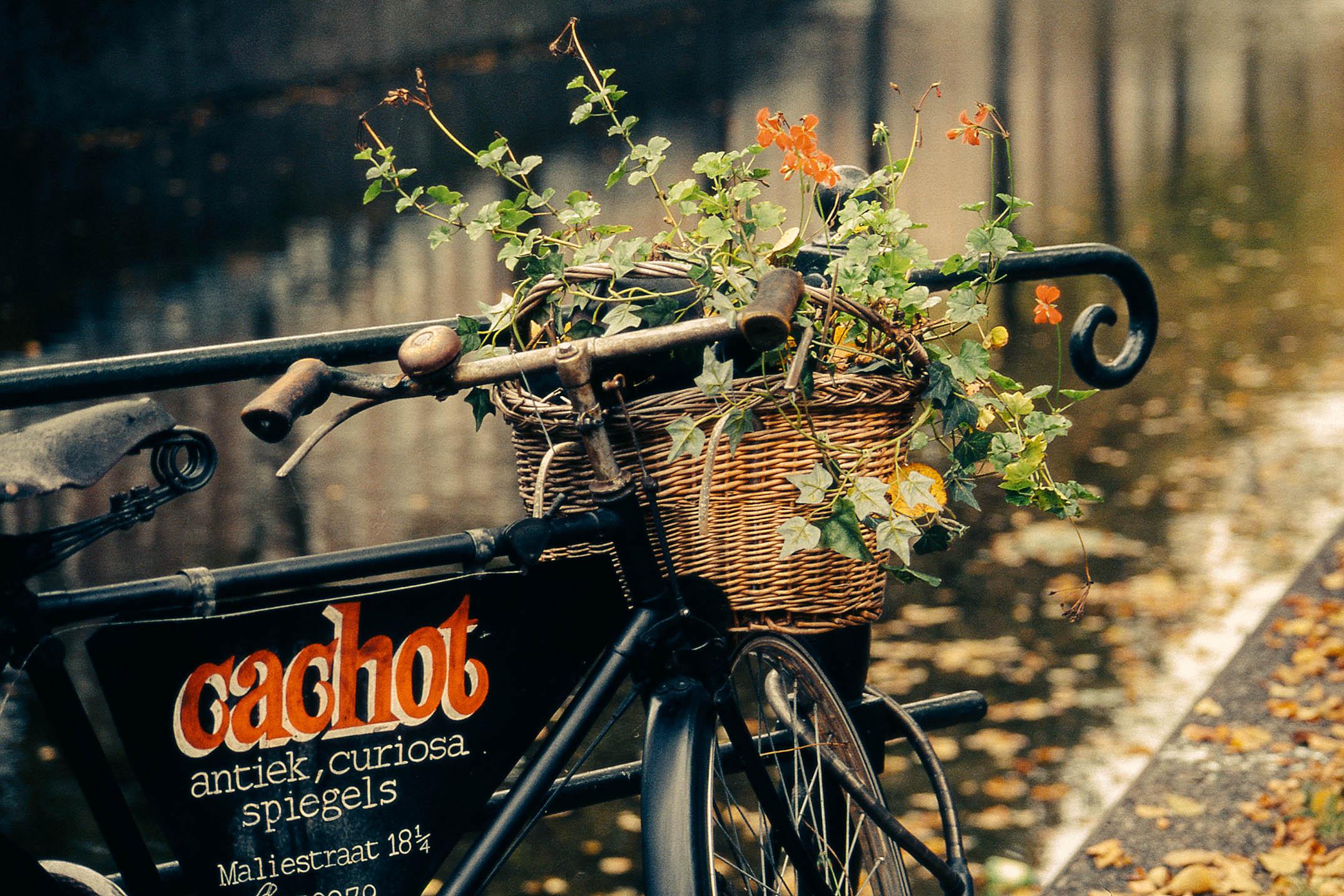 Велосипеды – галерея